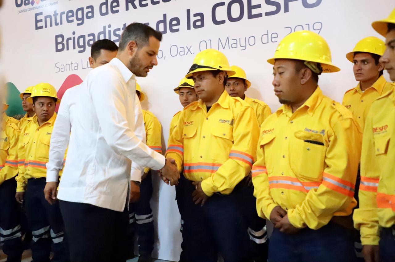 Los casi 200 incendios que se han registrado en la entidad, han dañado más de 12 mil hectáreas.