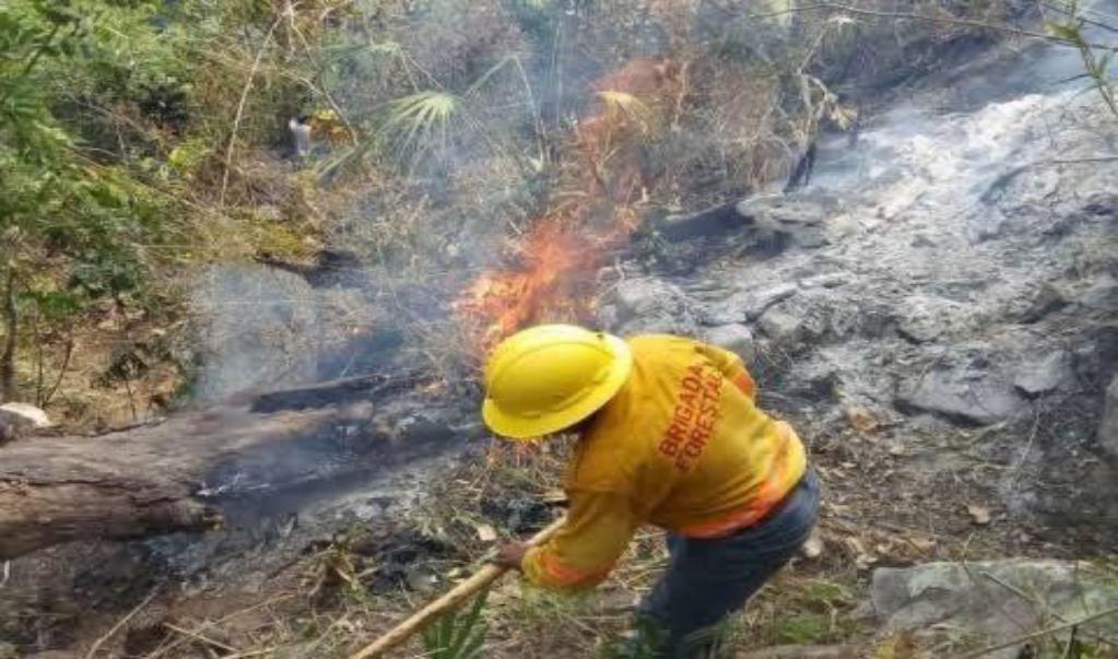 Además de pandemia por Coronavirus, Oaxaca enfrenta incendios forestales