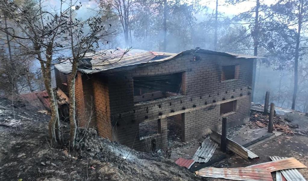 Por incendios forestales, Federación declara emergencia en Jaltianguis y Sola de Vega