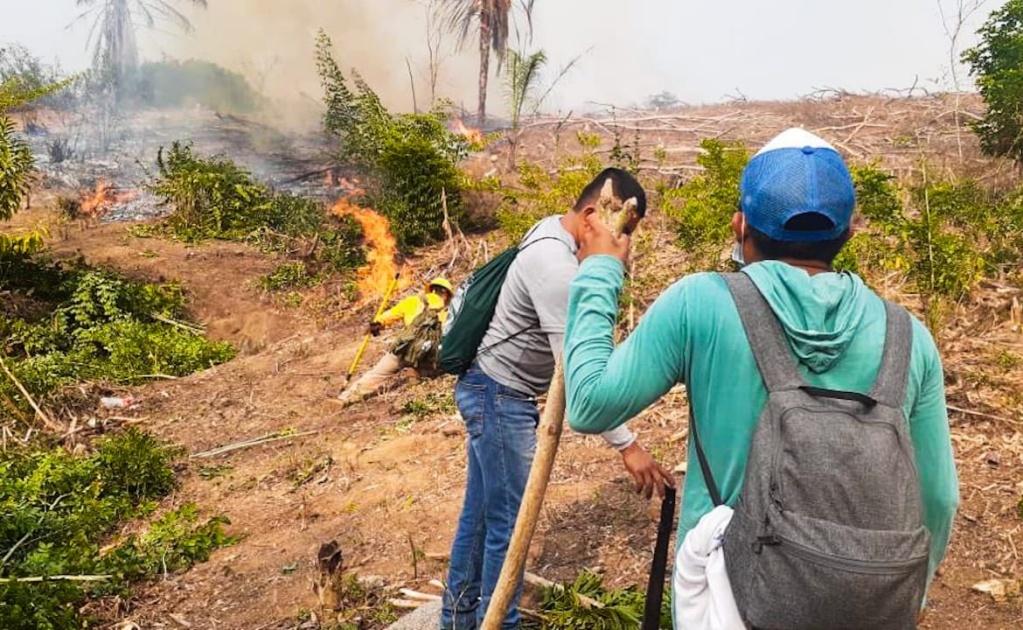 Se registran 5 incendios forestales activos en Oaxaca este viernes