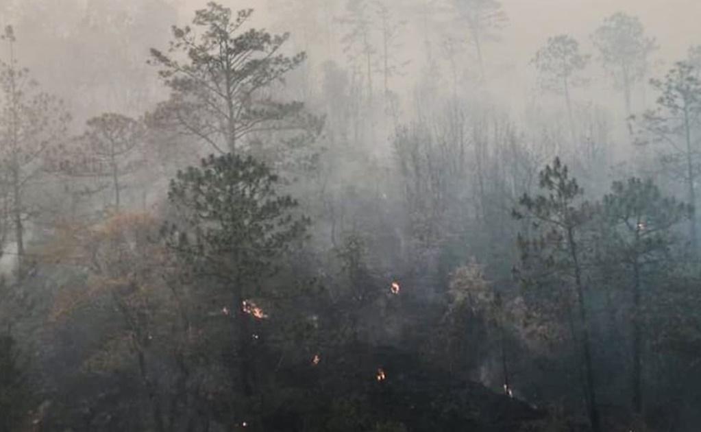 "Acusan ""grupos de choque"" de Villa Sola de Vega de provocar incendios forestales"