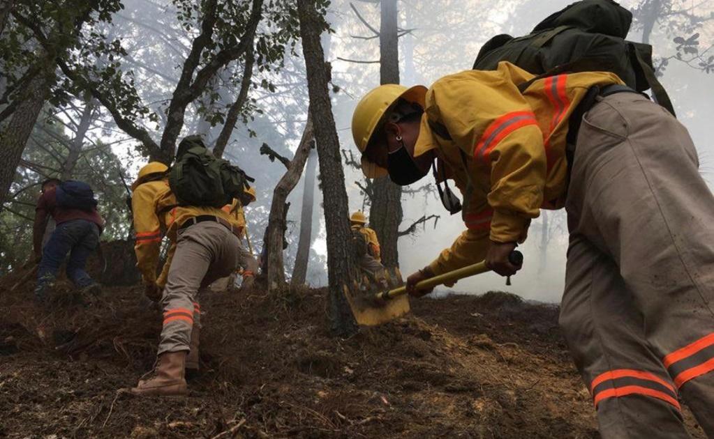 Federación declara en emergencia a 5 municipios de Oaxaca por incendios forestales