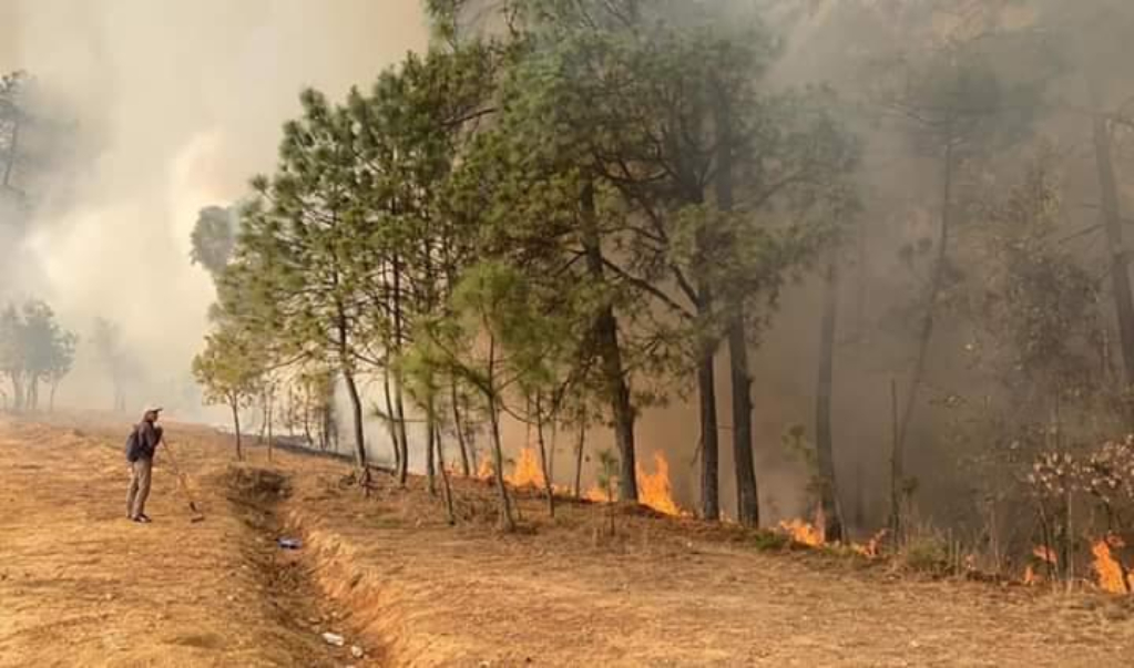 En plena pandemia, incendio forestal dejó sin agua a pobladores de Tepejillo
