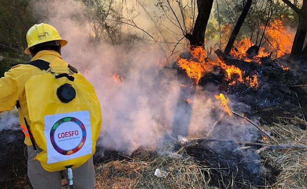 Por tercera ocasión arde Ayutla Mixe en esta temporada de incendios forestales, van 155 en el año