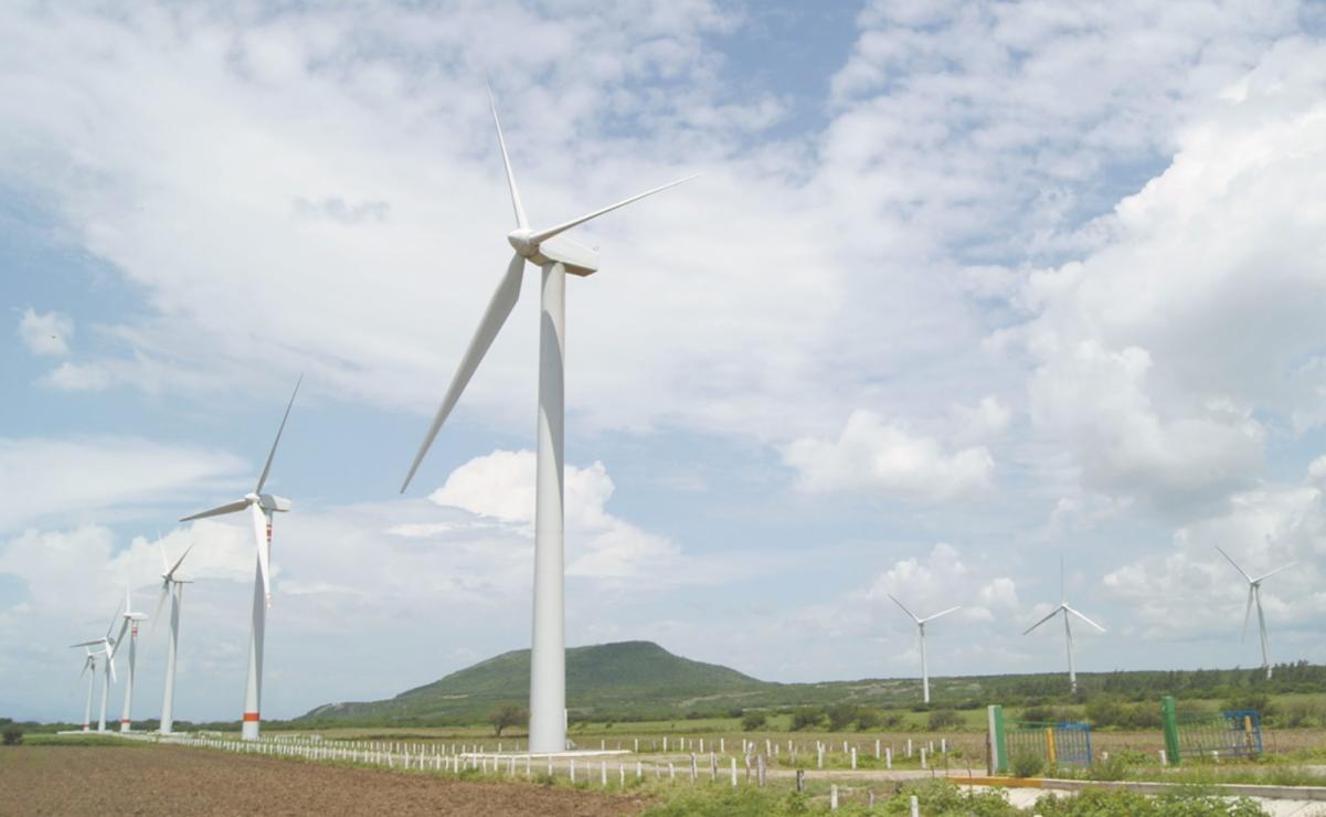 CFE revisará contratos de 5 parques eólicos en Oaxaca