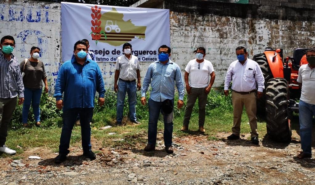 Productores de sorgo se asocian para enfrentar crisis por Covid-19 en el campo istmeño