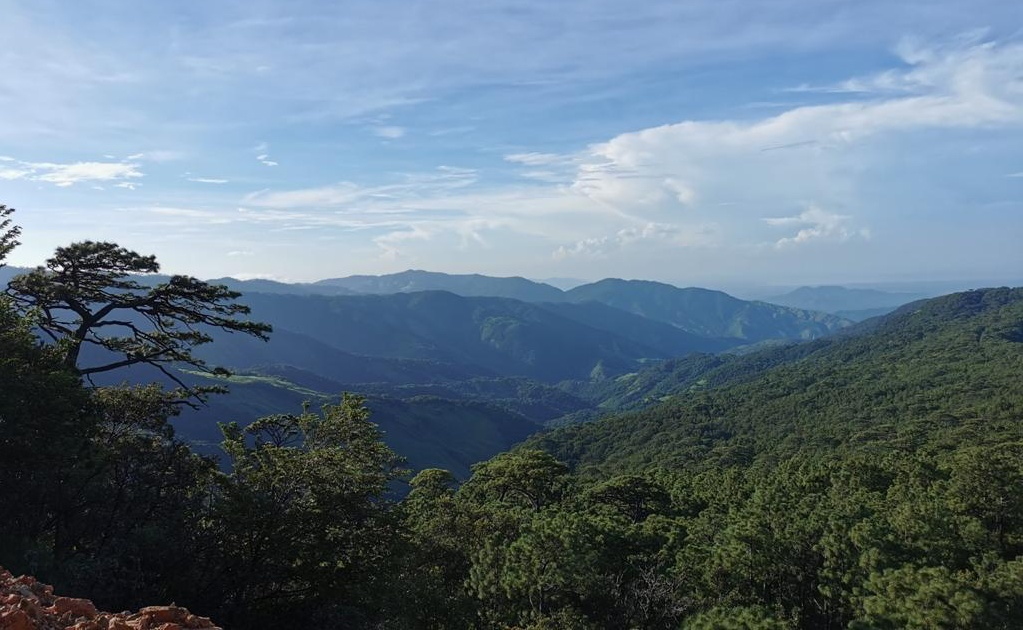 Rechazan mina en selva de Los Chimalapas; piden a Semarnat negar permiso de exploración