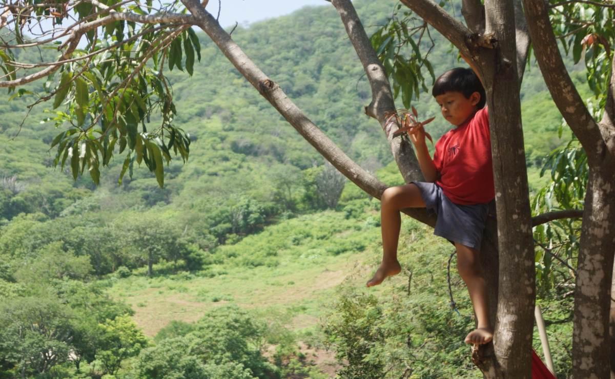 Gusiubí aprende de la tierra y los ancianos: su familia le enseña fuera del sistema educativo