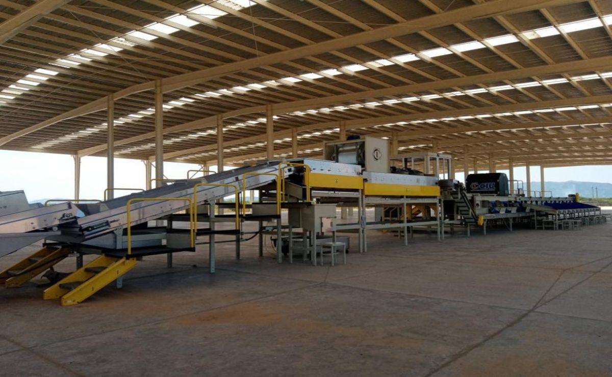 Los primeros inversionistas del Corredor Interoceánico arriban al puerto de Salina Cruz