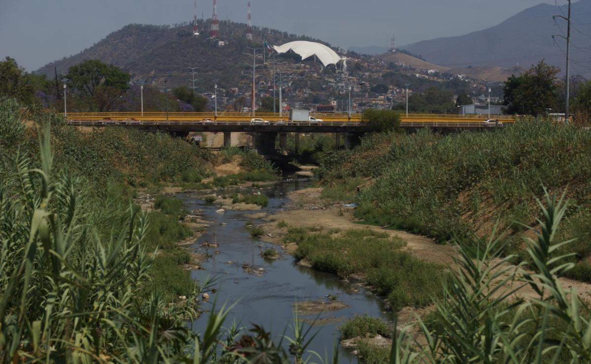 Alta contaminación en río Atoyac viola derechos humanos: CNDH; instruye a su rescate