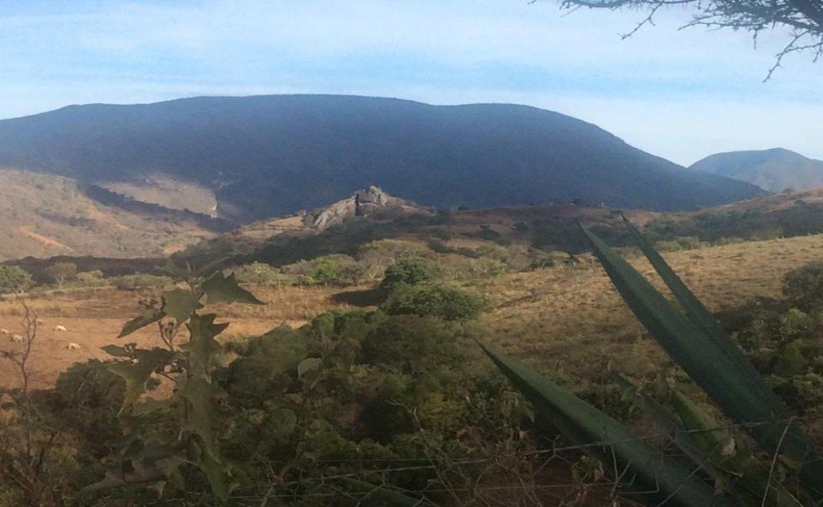 Denuncian desplazamiento de decenas de familias de Sola de Vega tras amenazas de grupo armado