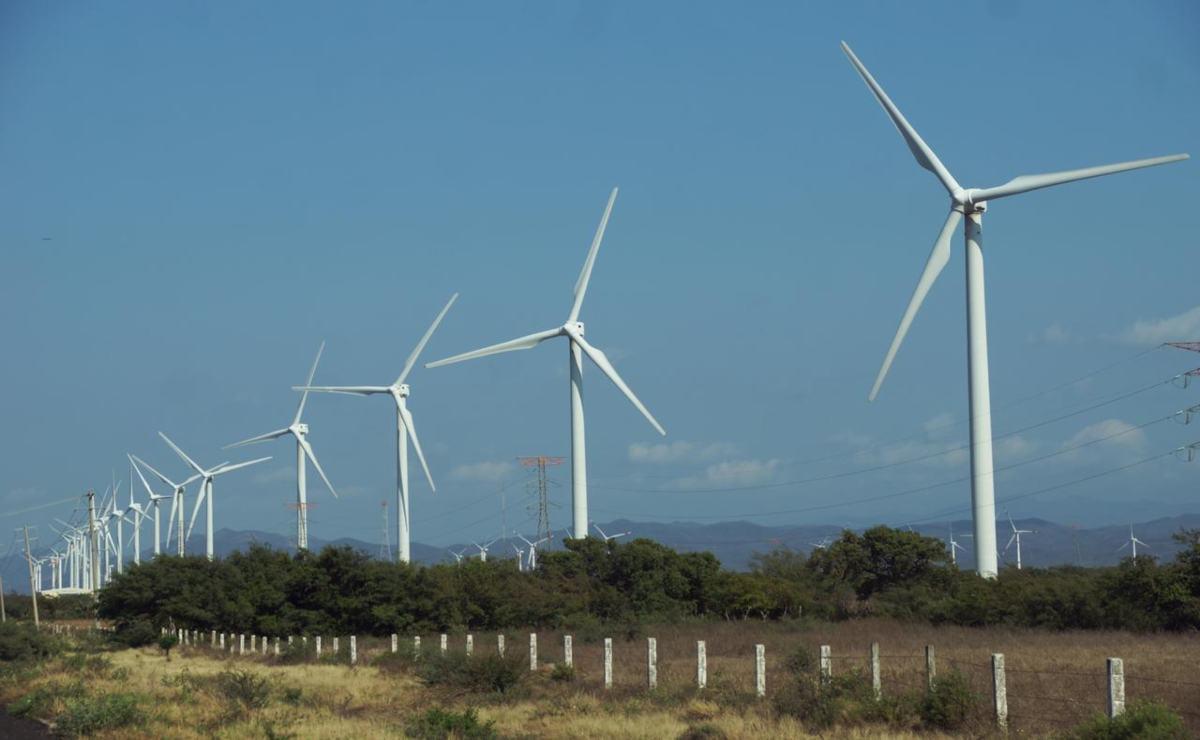 Peligran los dos nuevos parques eólicos que se planean construir en el Istmo