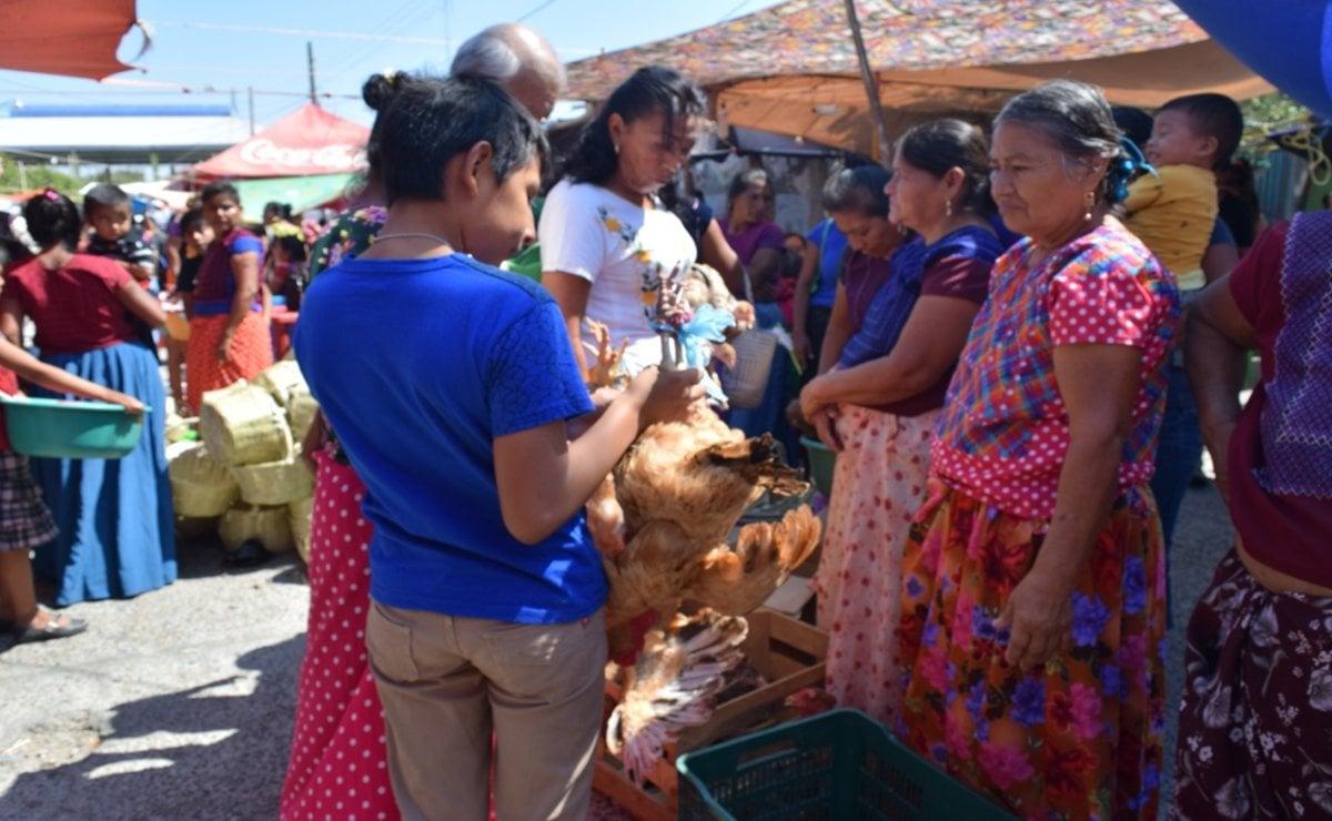 El mercado indígena que reúne a mujeres zapotecas e ikoots de Oaxaca el Día de la Candelaria