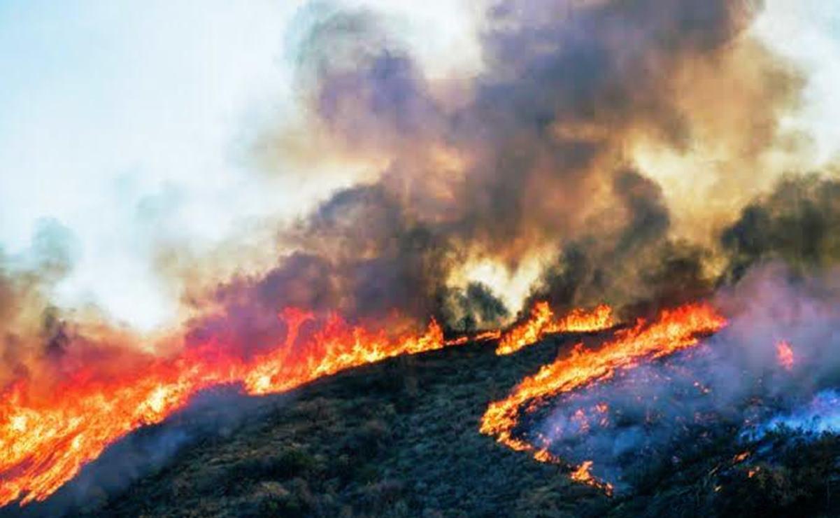 Vientos avivan el fuego en Santa María Peñoles, se mantiene activo con 4 incendios más en Oaxaca