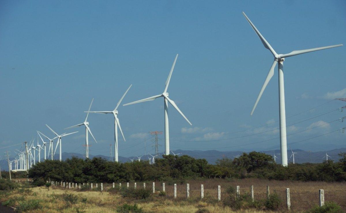 A 5 años de las promesas de la consulta indígena, parque eólico para Juchitán nunca llegó