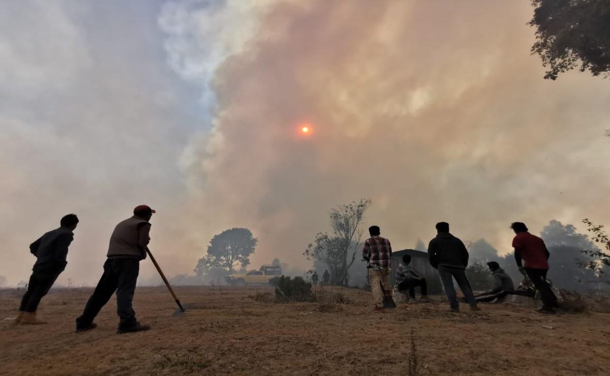 Incendio forestal en Santiago Clavellinas arrasa con 10 viviendas; hay 4 activos en Oaxaca