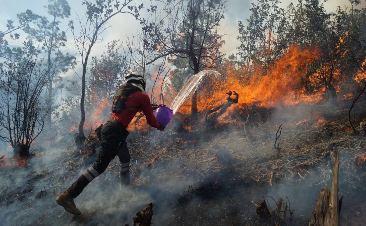 Por incendios forestales, declaran en emergencia a 5 municipios de Oaxaca