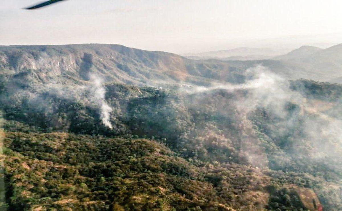Incendio forestal consume dos parajes de la selva de Los Chimalapas, en Oaxaca