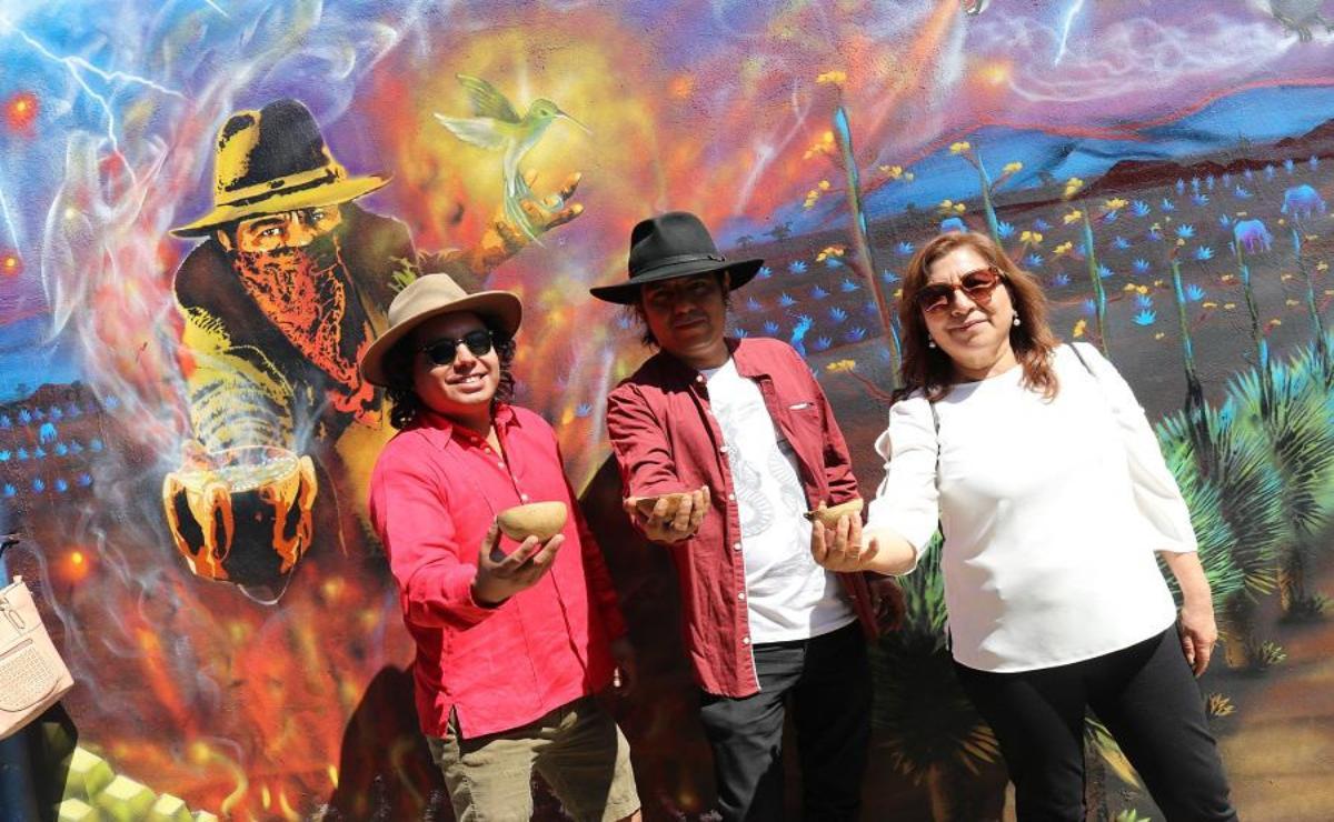 ¿Agaves silvestres y grafitti? Jóvenes de Oaxaca visten calle de la capital con arte urbano