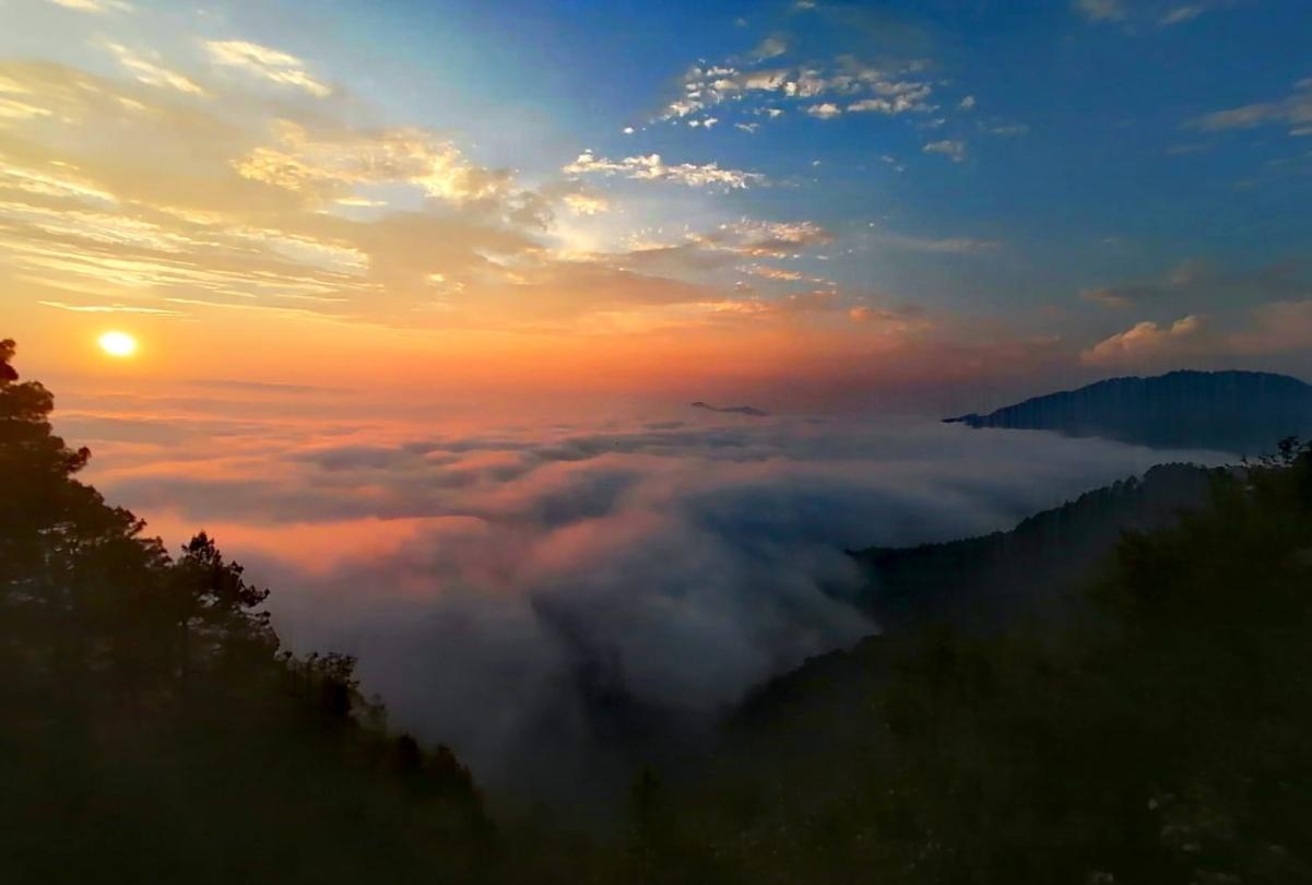 Súbete a un columpio extremo en Ben'Zaa, un bosque de niebla en Oaxaca