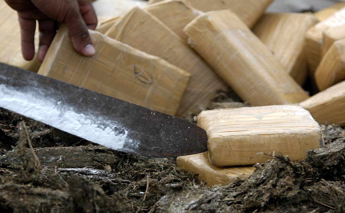 Destruye FGR en Oaxaca más de 600 kilos de drogas como marihuana y cocaína