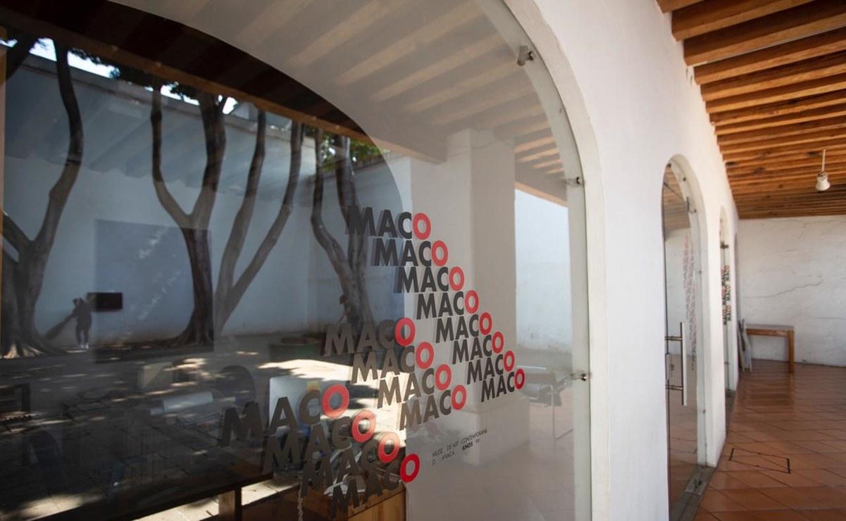 A merced de fauna nociva, 700 obras del Museo de Arte Contemporáneo de Oaxaca que llevan meses en una bodega