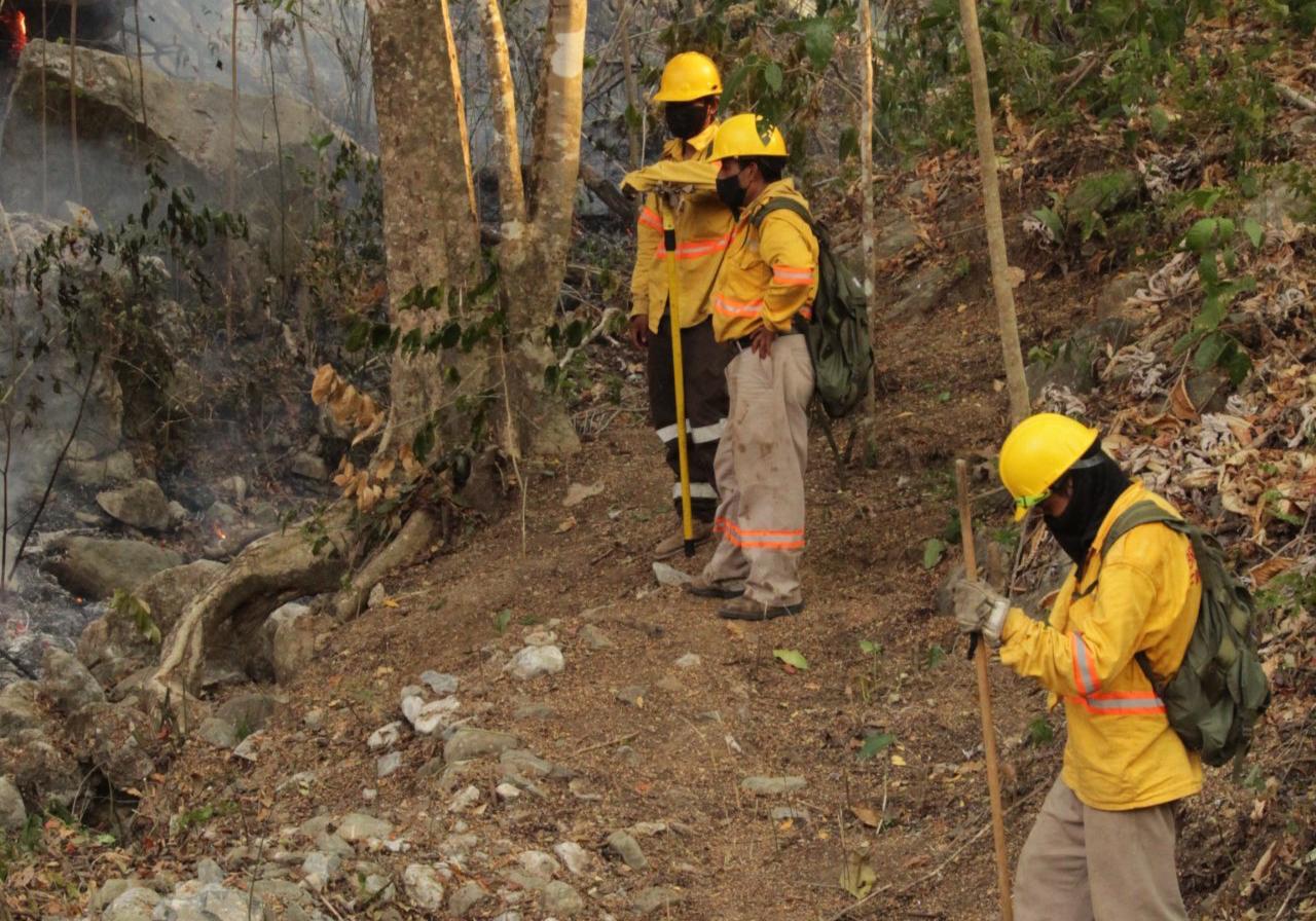 Controlan al 100% incendio forestal en Teojomulco, en la Sierra Sur de Oaxaca; hay 7 activos