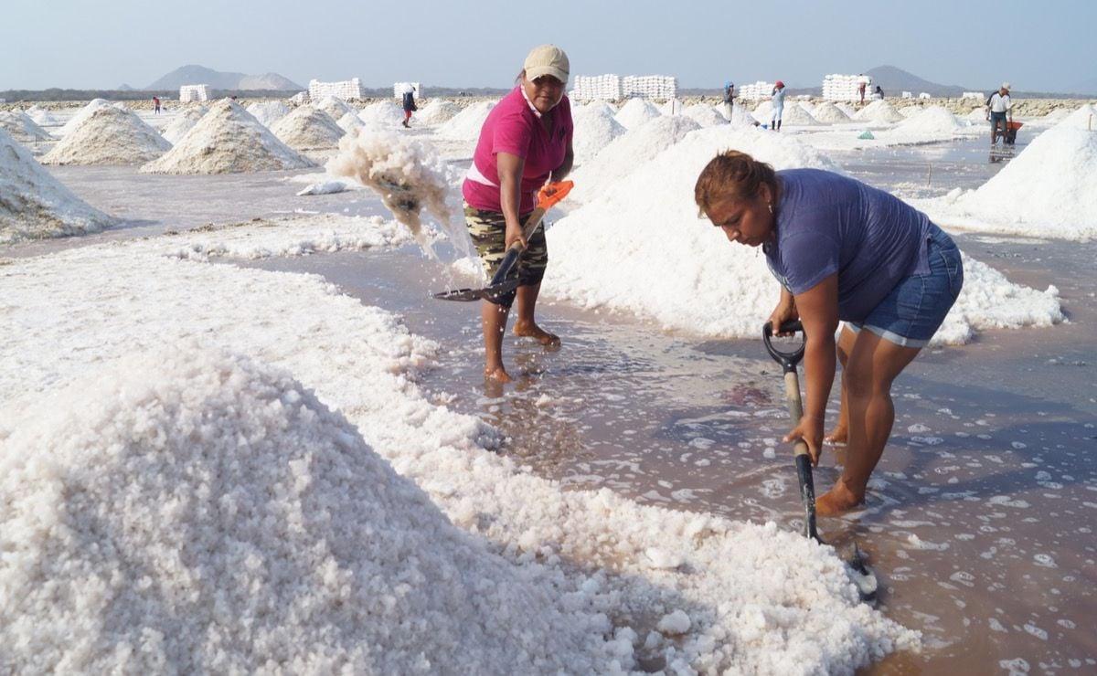 Madres de la sal:  200 mujeres de Oaxaca crecen a sus hijos entre agua de mar; enfrentan doble crisis