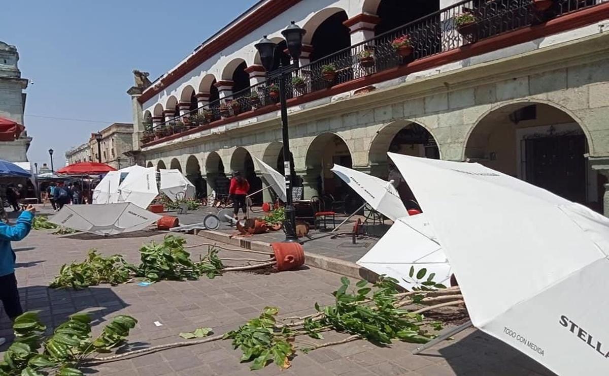 Inaceptable que demandas de justicia terminen en vandalismo e intimidación: Coparmex Oaxaca