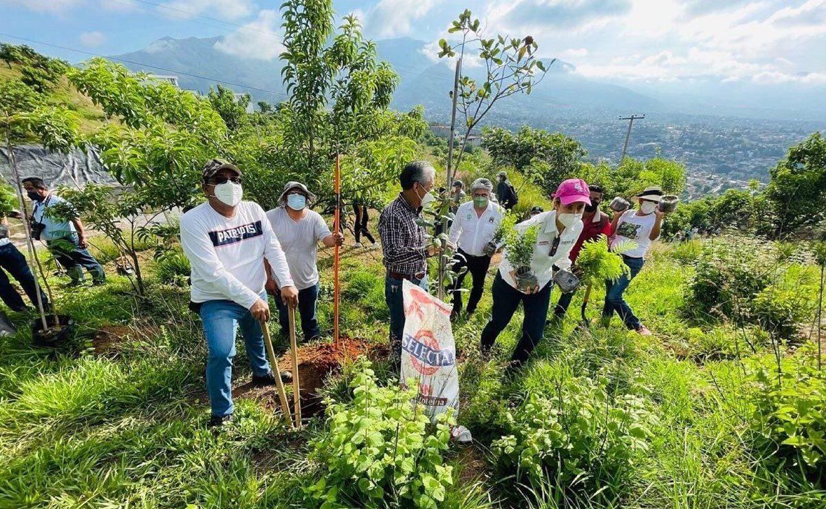 Ante invasiones en Cerro del Crestón, en la ciudad de Oaxaca, vecinos exigen diálogo con Semaedeso