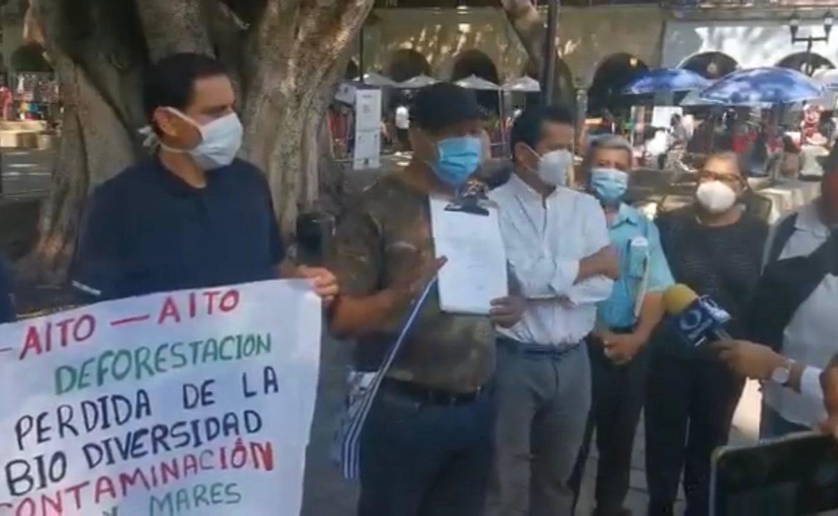 """Ambientalistas de Oaxaca advierten """"ecocidio"""" de mil 500 árboles en la capital, por obras en Símbolos Patrios"""