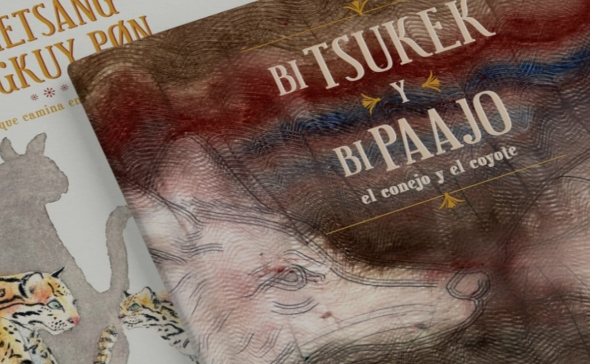 Presentan campaña para publicar libros de cuentos en lengua zoque