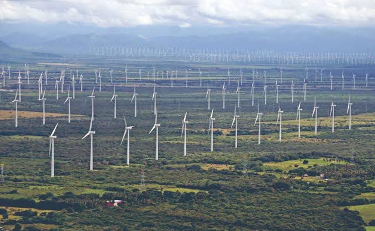 Piden suspender consulta indígena sobre parque eólico ante aumento de Covid-19 en Oaxaca