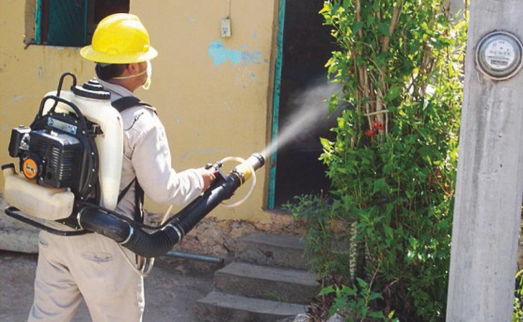 Además del Covid-19, en el Istmo de Oaxaca se enfrentan dengue y chicungunya