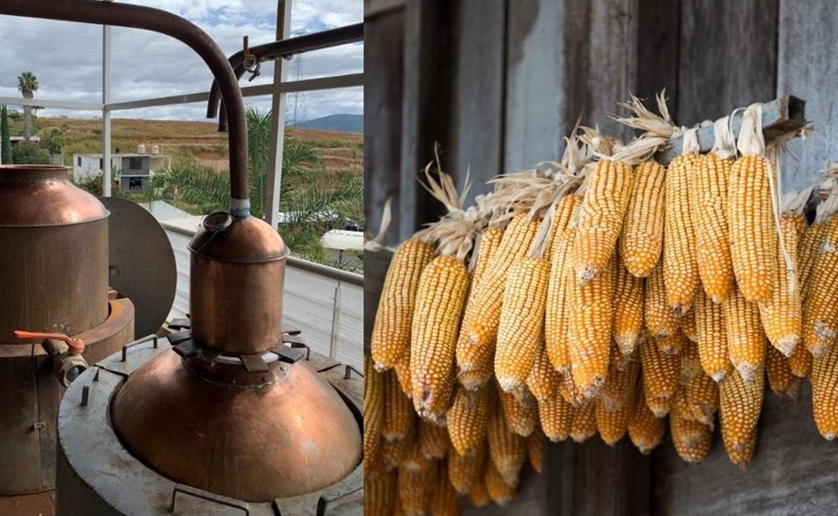 El whiskey mexicano que nació en Oaxaca para defender el maíz