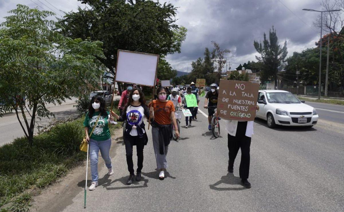 Ante rechazo de obra vial en la capital de Oaxaca por derribo de árboles, la clausuran simbólicamente