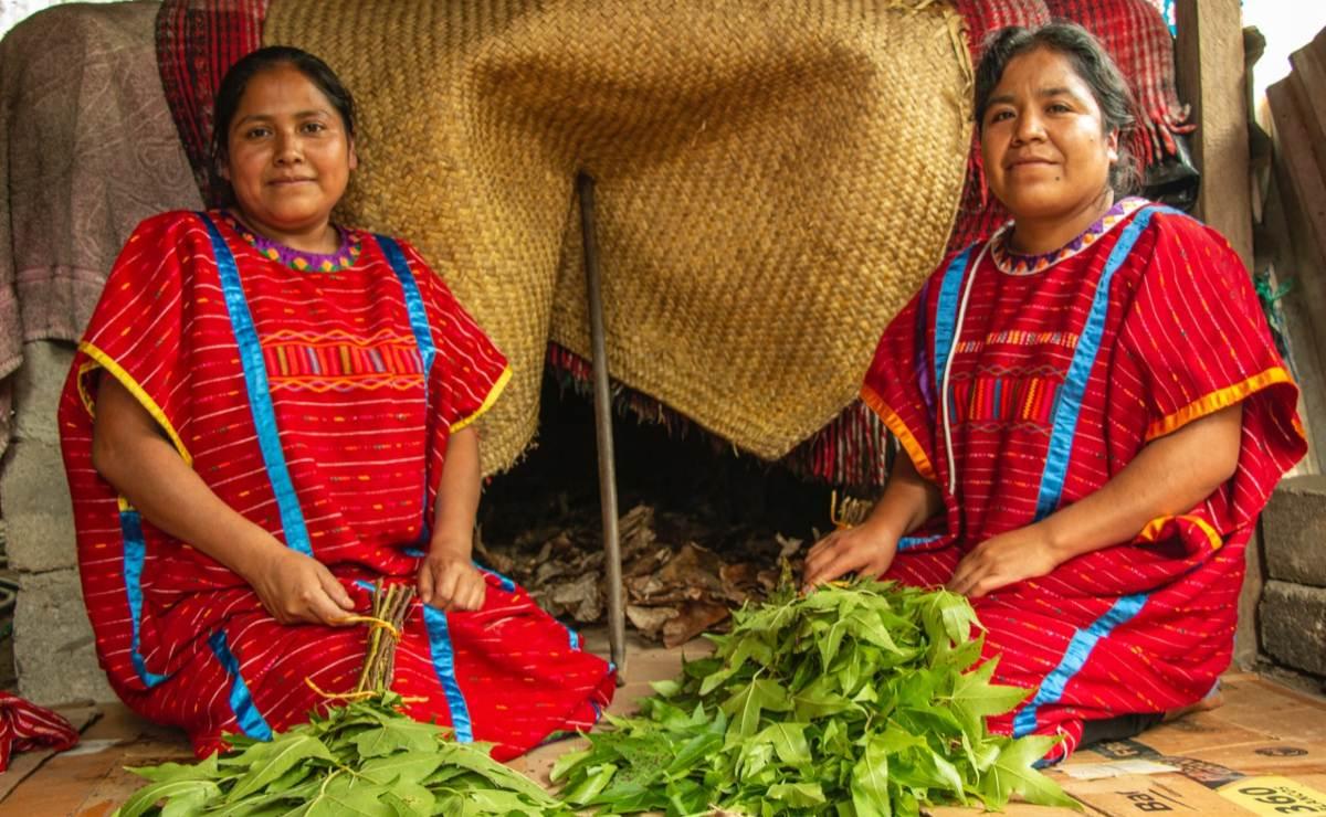 Pueblos triquis de Oaxaca resisten pandemia con el kuaá já, un baño de hierbas en el temazcal