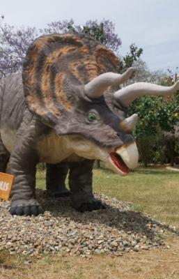 A un lado Jurassic Park, en Oaxaca puedes convivir con dinosaurios