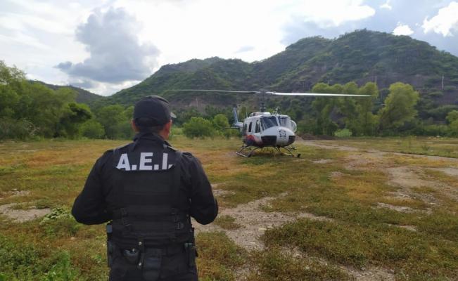 Asegura Fiscalía armas, droga y hasta un tigre en cateos simultáneos en Zoquitlán
