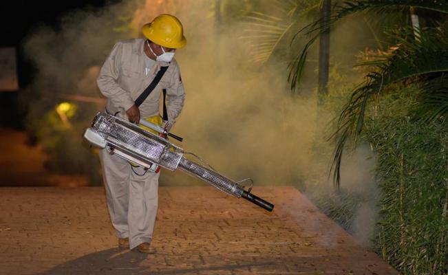 Aumentan a 87 casos confirmados de dengue en el estado de Oaxaca
