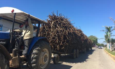"""El """"boom"""" del etanol no beneficia a los cañeros de la Cuenca"""