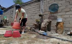 Piden SSO aprovechar cuarentena por Covid-19, limpiando patios para evitar casos de dengue