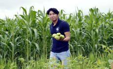 Universitarios experimentan con cultivos para apoyar a campesinos de Papalutla a paliar la crisis
