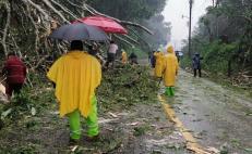 Alertan inundaciones y deslaves por lluvias en la entidad; mantienen monitoreo de ríos