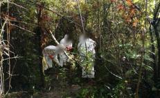 Tras cateo, caen dos por desaparición de personas en la Cuenca del Papaloapan