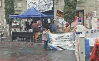 Protestas feministas se esparcen en 25 estados