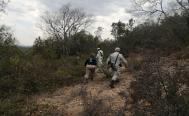 Fiscalía de Oaxaca y familiares buscan a Claudia Uruchurtu en cañadas y panteones de Nochixtlán