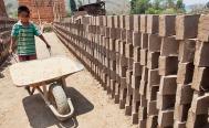 En Oaxaca hay 153 mil niños que trabajan en labores no permitidas por la ley, según la Digepo