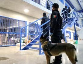 Realizan 300 elementos de seguridad operativo de revisión en penal varonil de Tanivet, Oaxaca