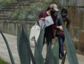Reportan 150 nuevos decesos por Covid-19 en Oaxaca en la última semana; confirman semáforo amarillo
